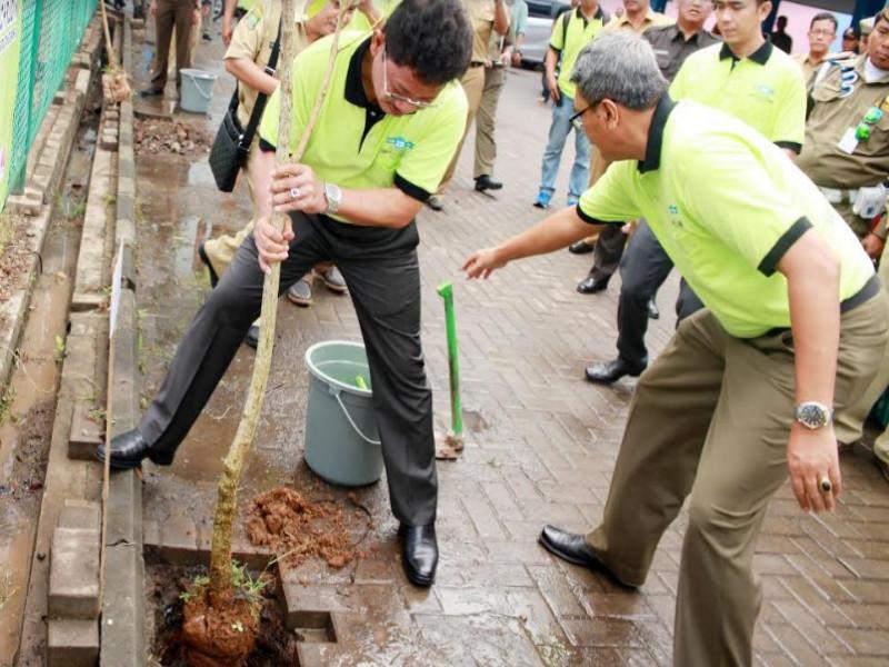 siapkan-ribuan-pohon-untuk-program-sedekah-oksigen-dan-penghijauan